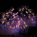 Festival dell'arte pirotecnica: anche quest'anno il contest fotografico