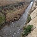 Boccadoro: storia di un progetto (accantonato) per un acquedotto tranese
