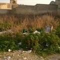 Area ex macello, ancora rifiuti e degrado