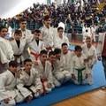 ASD New Accademy Judo: 12 atleti sul podio