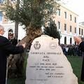 Inaugurate le nuove aiuole di piazza Natale d'Agostino