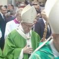 """Domeniche estive ambientali a Trani nel nome dell'enciclica  """"Laudato sii """""""