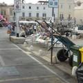 Disabili e posti auto occupati: ecco cosa succede sul porto