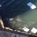 Molo Sant'Antuono, ormai solo un mare di rifiuti