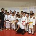 New Accademy Judo, ben 12 medaglie ad Andria