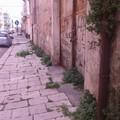 Via Mausoleo, il marciapiede dimenticato come l'ex istituto professionale