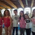 Nuoto, pioggia di medaglia a Canosa per gli atleti dell'Aquacarp di Trani
