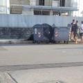 Pomeriggio cruento in via Papa Giovanni, in strada perde la vita un cavallo