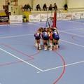 Lavinia Group Volley Trani, è l'ora del riscatto: domenica gara in casa contro Fidelis Torretta