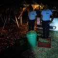 In zona Lopane Santa Lucia sventato un altro furto d'uva dalle Guardie Campestri