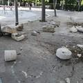 Forte scossa di terremoto a Trani: evacuati gli edifici pubblici