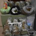 Deteneva circa 14kg di marijuana, arrestato pregiudicato biscegliese a Trani