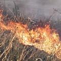 Rischio incendi per i terreni incolti in contrada Turrisana