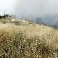 In fiamme i campi incolti di via Andria