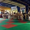 Estate tranese della Judo Trani, oltre 300 bambini sul tatami ieri sera
