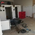 """Trani, furto di rame all'interno de  """"La sciala """": arrestato un 51enne"""