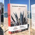 """Sul Porto di Trani le installazioni dei cinque libri finalisti del  """"Premio Fondazione Megamark """""""