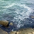 Strane chiazze nel mare di Trani