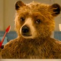 """All'Impero il secondo episodio delle avventure dell'orso  """"Paddington """""""