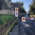 Al via i lavori di rifacimento del manto stradale: si parte da via Monte d'Alba