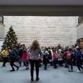 """Natale al Polo Museale, anche quest'anno ritornano le  """"Sere d'incanto """""""