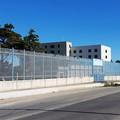 """Sindacato Polizia Penitenziaria:  """"La senatrice Piarulli si ricorda solo ora del carcere di Trani? """""""