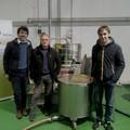 La Città di Trani ha il suo olio: prodotto con olive di proprietà comunale