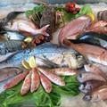 Nasce GoPescheria: il pesce dal mare direttamente a casa