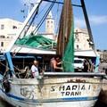 """Trani dal mare con il  """"pescaturismo """""""