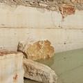 Archeoclub di Trani: in principio fu la Pietra di Trani