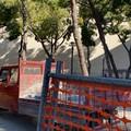 Pinetina di via Andria, a breve la ripresa dei lavori sospesi a causa del Coronavirus