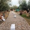La Croce di Colonna si festeggia anche a Santa Geffa