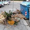 Dopo Natale, presepi abbandonati per strada