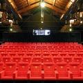 Cinema, la passione oltre la crisi