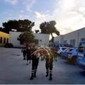Anche Trani si unisce al dolore per la perdita dei due poliziotti uccisi a Trieste