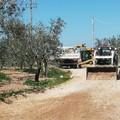 Lavori sulle strade rurali, lista Bottaro sindaco: «Ci saranno iniziative analoghe»
