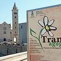 Eventi di Primavera, a Puglia Imperiale succede Made in Puglia.net