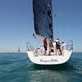 Lega navale Trani, ospitato stage per velisti under 16