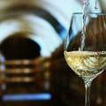 Vinificazione dei vini bianchi