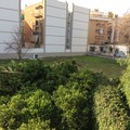 Orto sociale: al via il nuovo progetto di Villa Guastamacchia