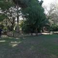 Villa Telesio, anche l'associazione Auser chiamata a presidiare l'area