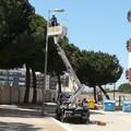 Largo Goldoni: dopo la pulizia ora la sostituzione dei corpi illuminanti
