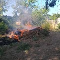 Ordinanza anti-incendi: obbligo di rimozione di sterpaglie su suoli incolti entro il 15 giugno