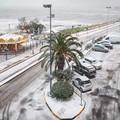 Arriva la neve anche a Trani e il paesaggio si colora di bianco