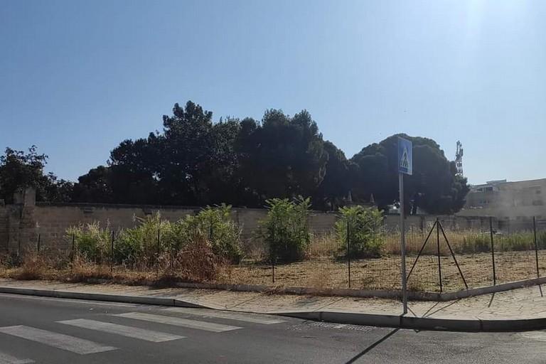 Terreno confinante con Villa Telesio bonificato