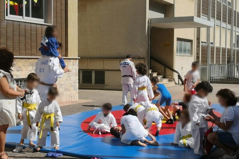 Judo e Falchi