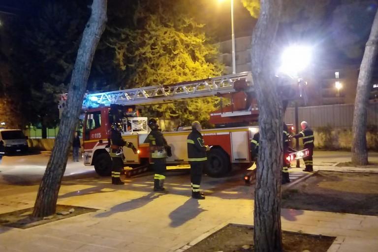 Vigili del fuoco nella pinetina di via Andria