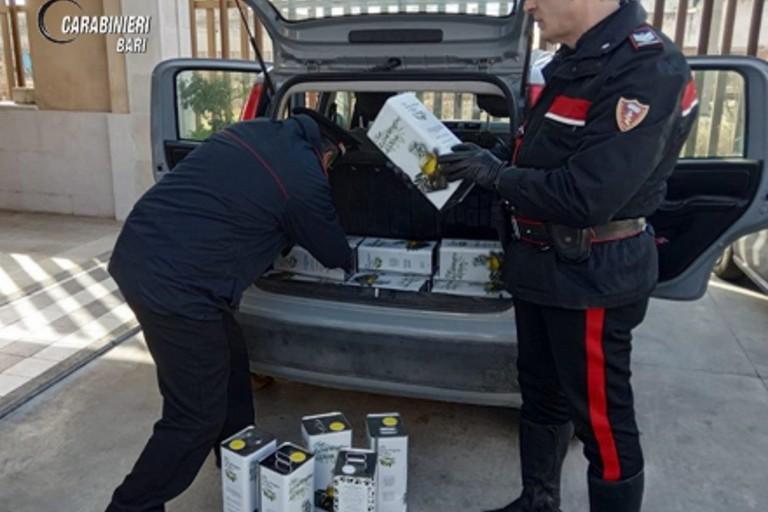 Rubano 175 litri di olio da una villa in zona Capirro, due arresti