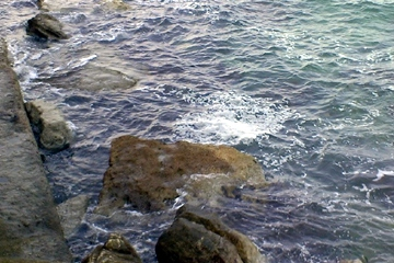 mare chiazze 1