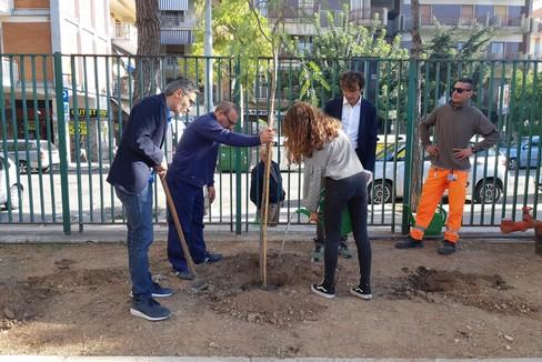 Piantumazione nuovi alberi alla scuola Baldassarre